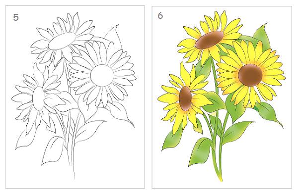 Cách vẽ hoa hướng dương nhanh và đẹp - Ảnh 2